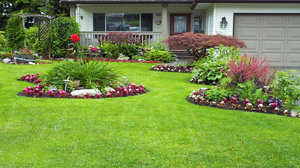 Home Landscaping Tips and Ideas