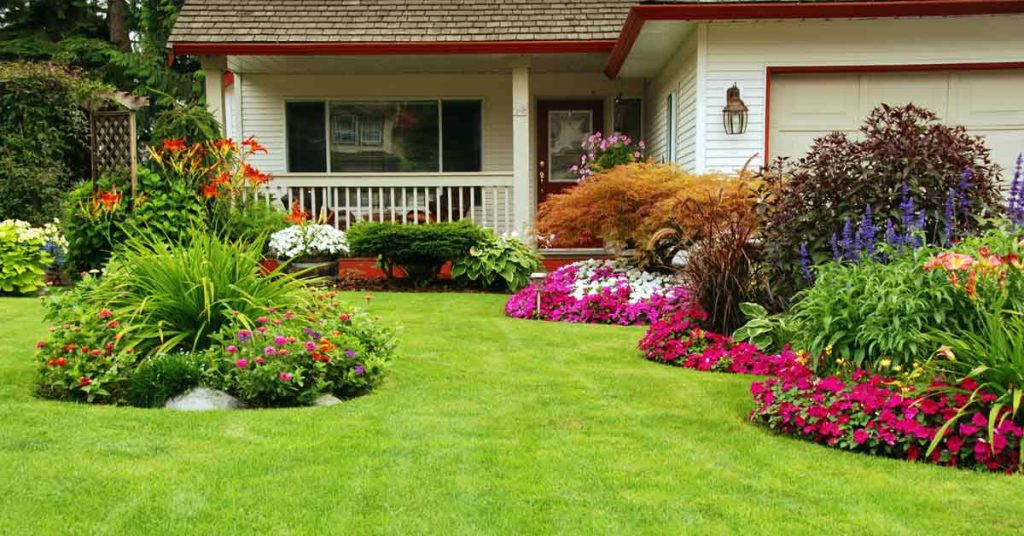 Best Lawn Care Tips for Every Homeowner